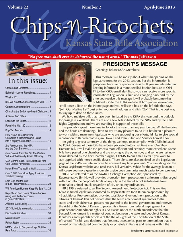 chips_cover